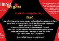 Venerdì 10/11/2017 – GALLO DI SERA: Orso